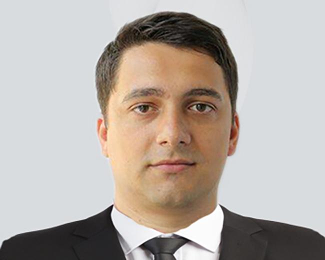 Consilier local Vilceanu